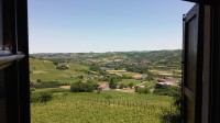 This is all that we are admiring from our window today:, the Unesco World Heritage hills, our vineyards, Nizza baby grapes and red roses. What else can we desire?