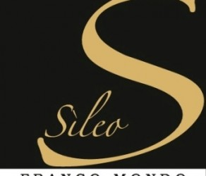 Sileo Piemonte Moscato Passito DOC 2008